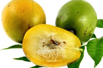 Choisir et conserver ses pommes cyth re bianca au naturel - Conserver pommes coupees ...